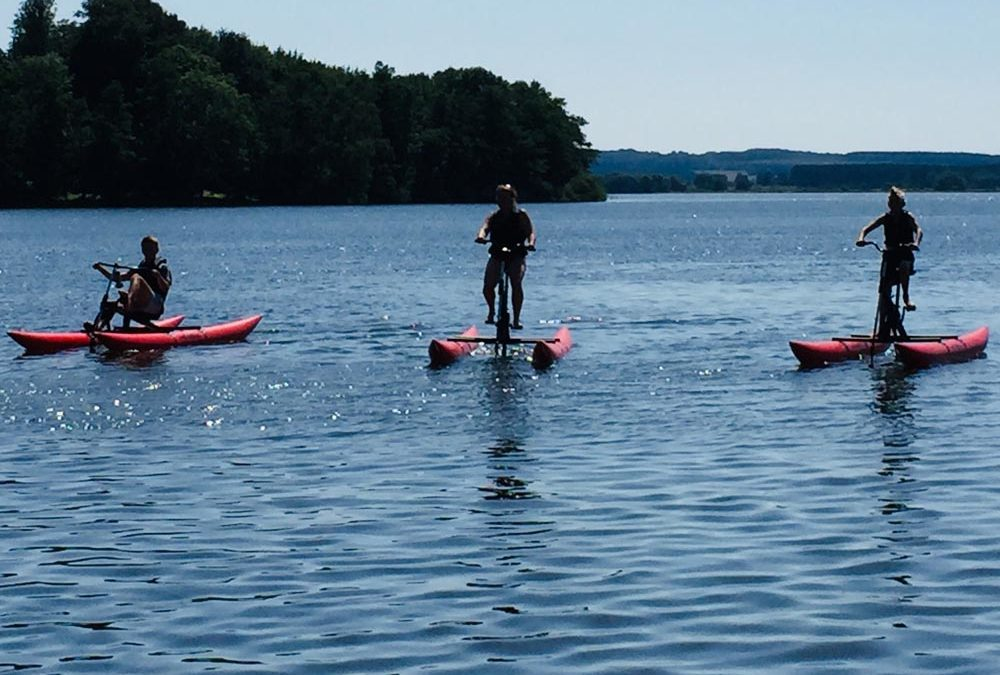 A Guided Lake tour on Water Cycles!