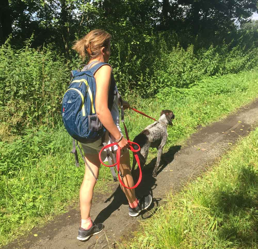 Hiking activity breaks Red Bird Farm Sweden