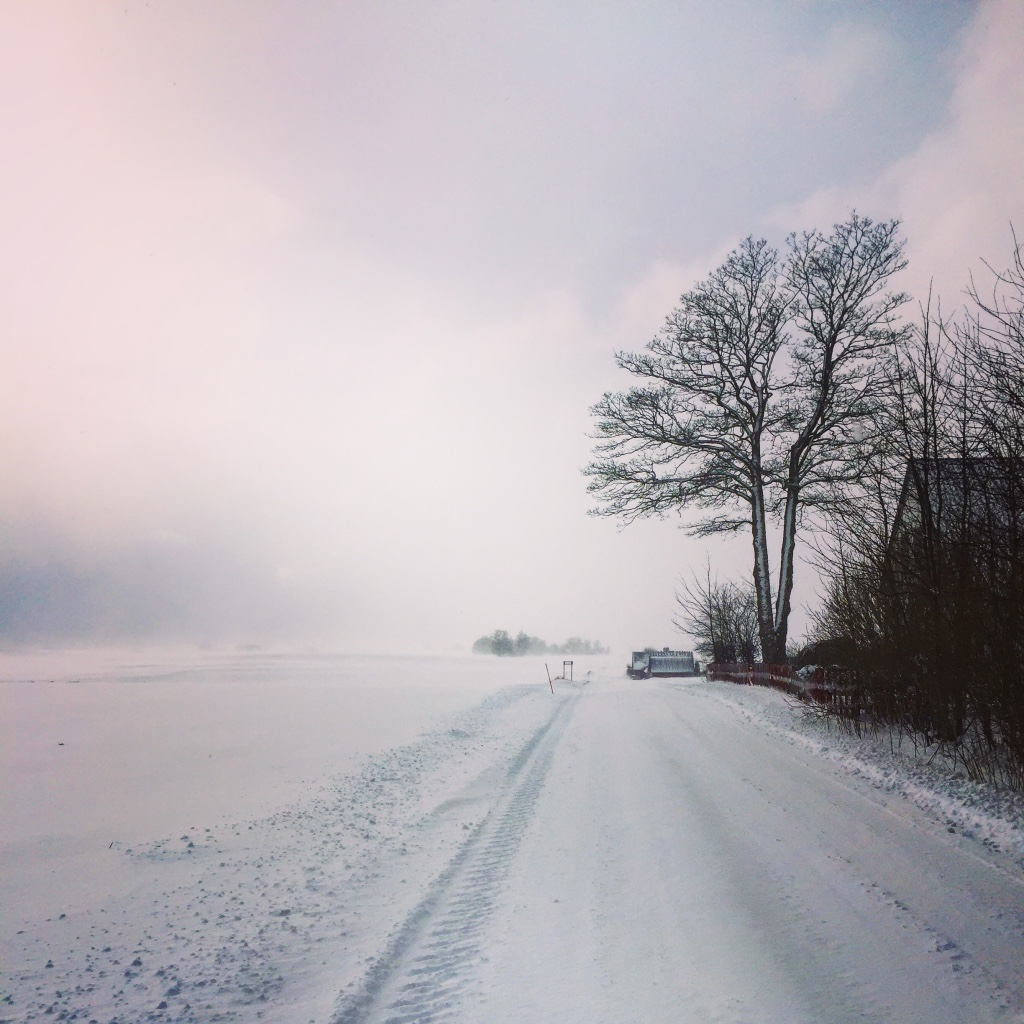 The approach to Red Bird Farm in winter